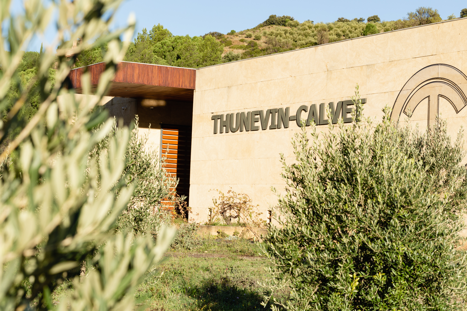 thunevin calvet gallerie domaine photo 4